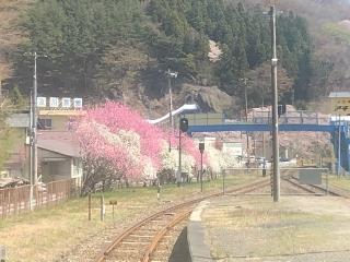 Image6_20