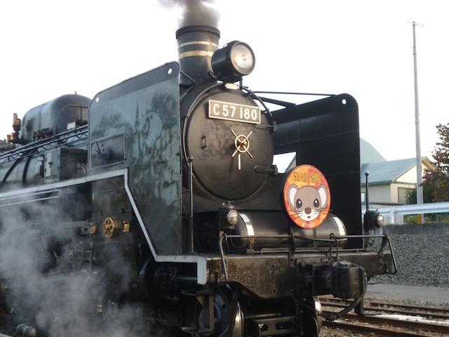 D121013o