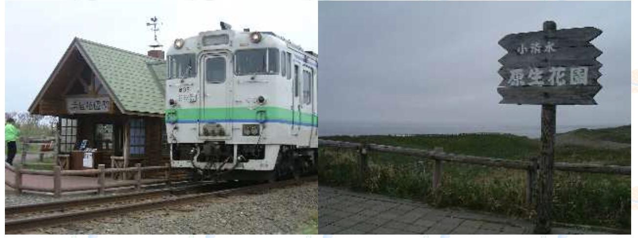 20010520a